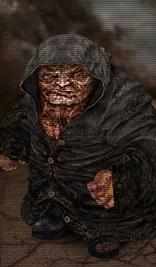Stalker:Call of Pripyat - Burer